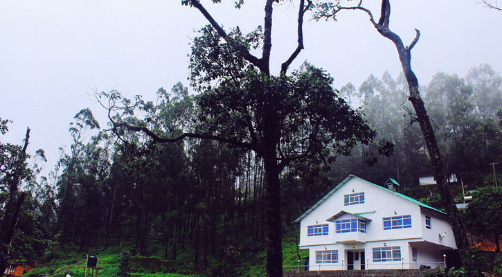 18-degree-homestay- Munnar
