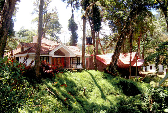 Mountian-Woods-Homestay-Munnar